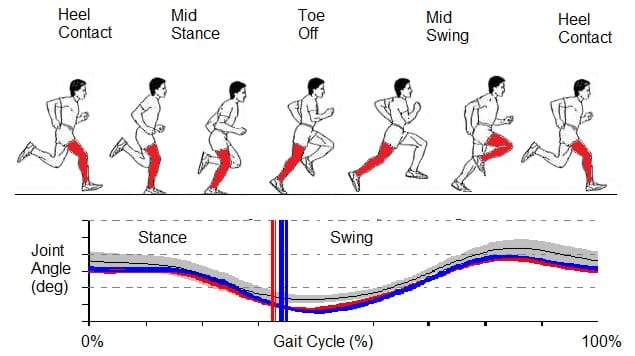 3D running gait analysis and injury treatment plans with Dr Oren Tirosh and Dr Simon Sostaric at Melbourne Sports & Allied Health Clinic